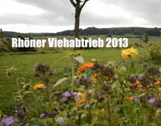 Rhöner Viehabtrieb 2013 in Simmershausen